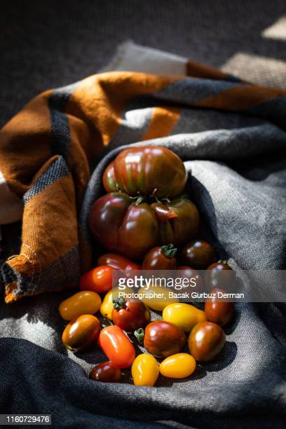 different types of organic and delicious tomatoes - basak gurbuz derman stock photos and pictures