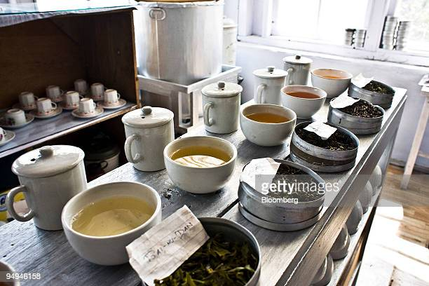 Different types of teas First Flush BaimuDan Silver Tips Imperial Oolong and Second Flush Muscatel are laid out for tasting at the Makaibari Tea...