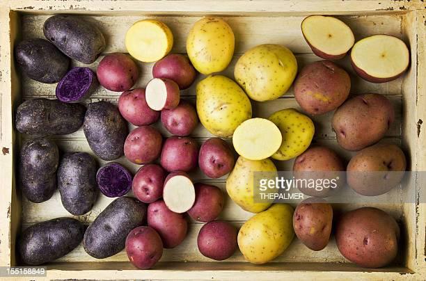 different varieties of potatoes