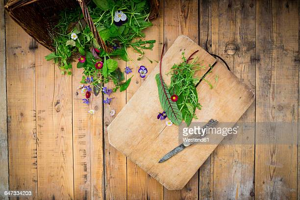 different wild herbs and edible flowers - yarrow stock pictures, royalty-free photos & images