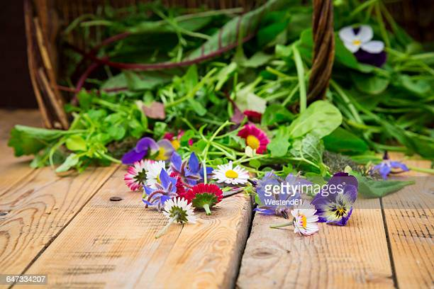 Different wild herbs and edible flowers