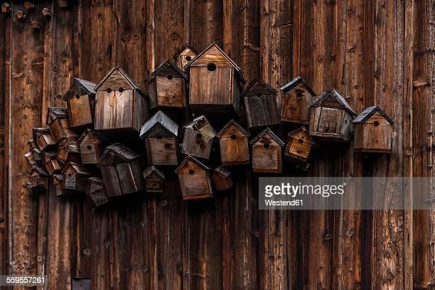 different wooden birdhouses hanging on wooden wall - vogelhäuschen stock-fotos und bilder