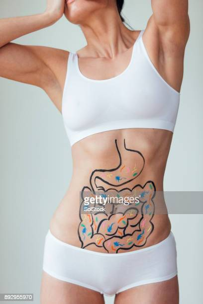 digestive problems - intestine stock pictures, royalty-free photos & images