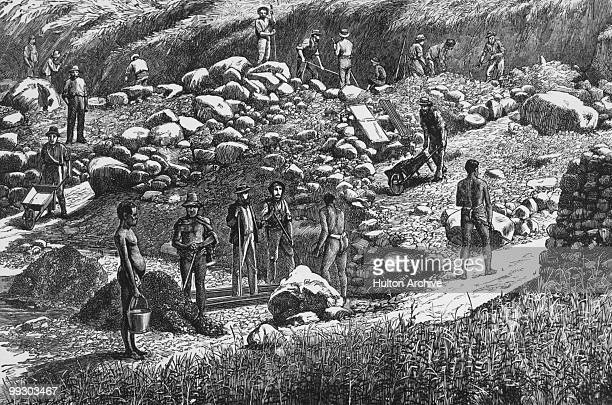 Diggers at work at a gold mine in South Africa circa 1850