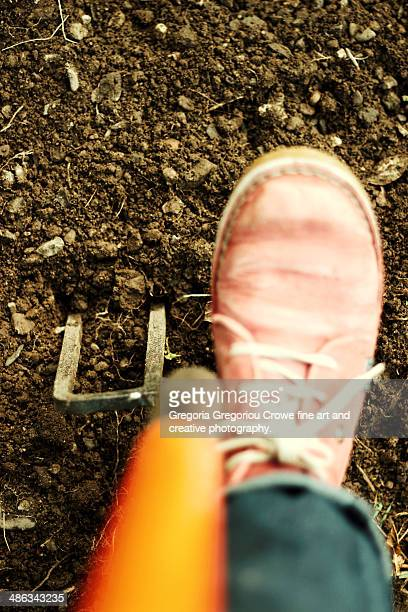 digging - gregoria gregoriou crowe fine art and creative photography stock photos and pictures