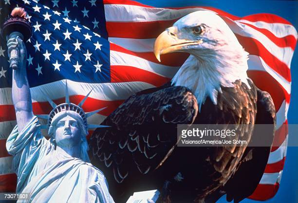 digital collage: american icons - bald eagle with american flag stock pictures, royalty-free photos & images