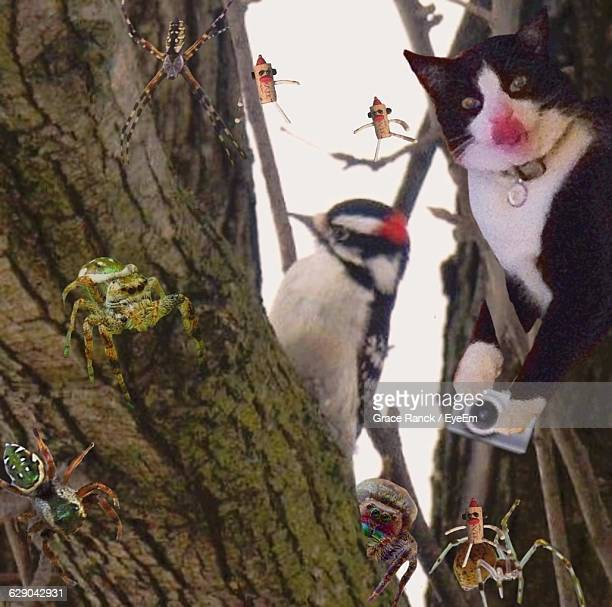 Digital Composite Image Of Animals And Tree