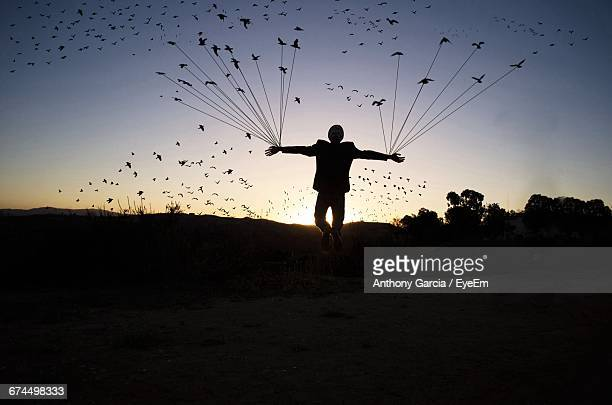 Digital Composite Image Of Birds Tied With Man Hands Against Clear Sky During Sunset