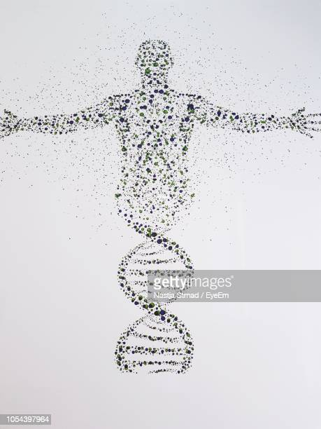 digital composite image of dna and human against white background - human representation stock pictures, royalty-free photos & images