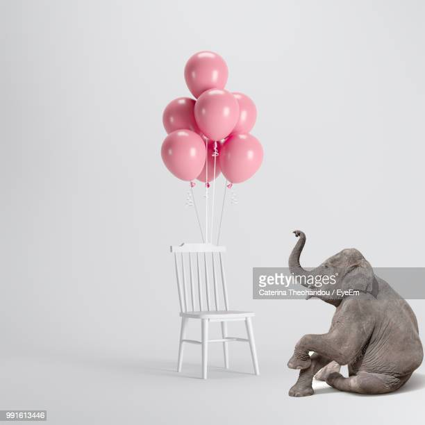 Digital Composite Image Of Elephant By Balloons On Chair Against White Background