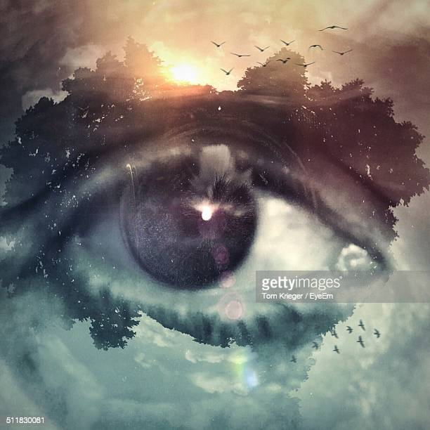 Digital composite image of eye with nature