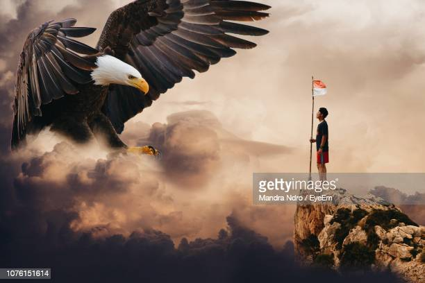 digital composite image of man looking at large eagle during sunset - indonesia flag stock photos and pictures