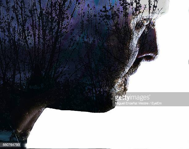 Digital Composite Image Of Man With Trees Against White Background