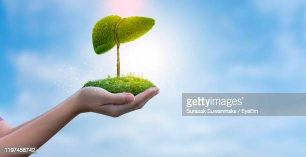 digital composite image of person holding green landscape against sky - human liver stock pictures, royalty-free photos & images