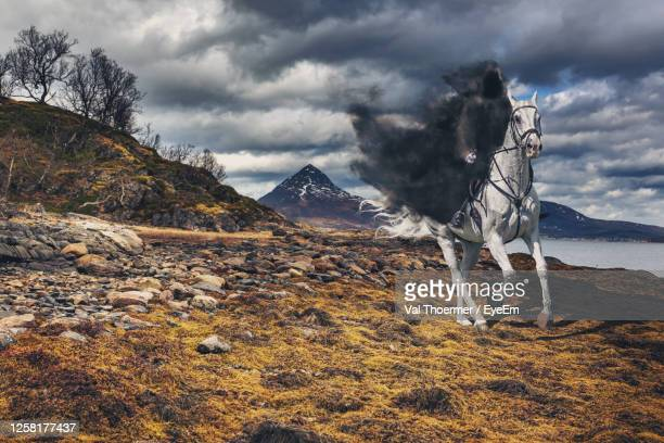 digital composite image of person riding horse - val thoermer stock-fotos und bilder