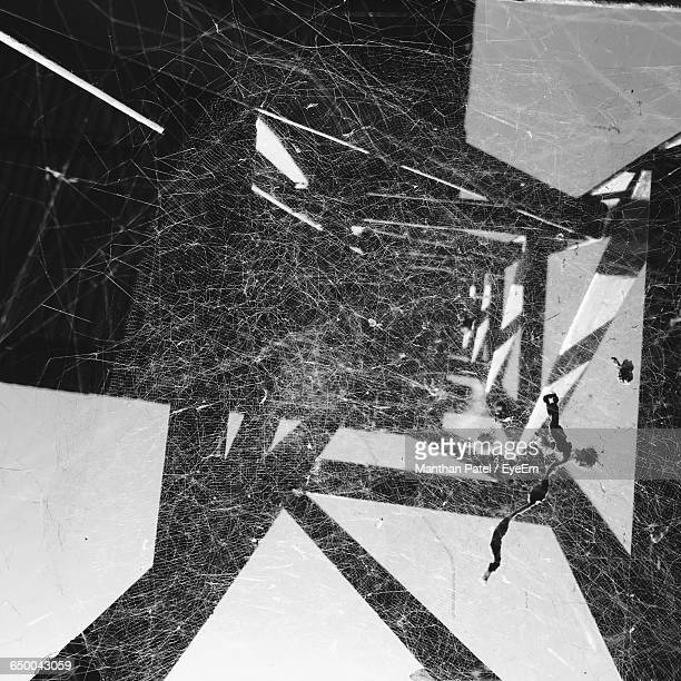 Digital Composite Image Of Spider Webs And Electricity Pylon