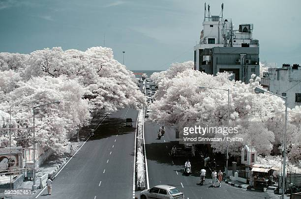 Digital Composite Image Of Trees Amidst Road Against Sky
