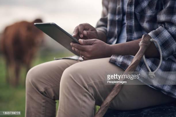 デジタル農業は、それが最近行われている方法です - スマート農業 ストックフォトと画像