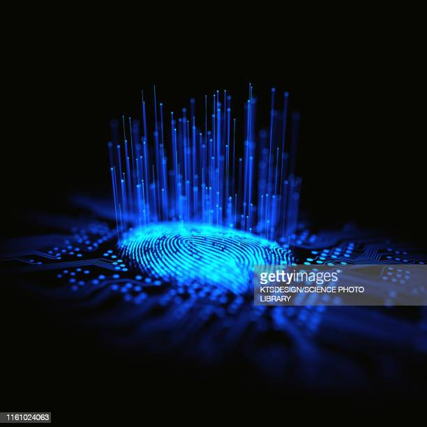 digital fingerprint, conceptual illustration - permission concept stock pictures, royalty-free photos & images