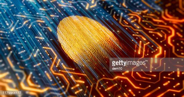 digital identity scanner - sensor stock pictures, royalty-free photos & images