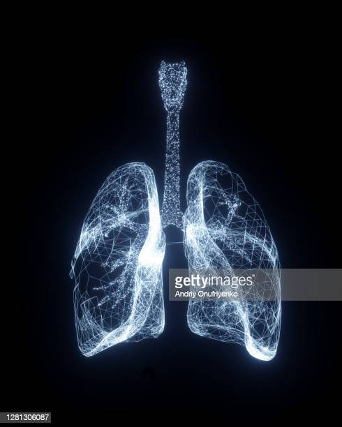 digital lungs - lung stock pictures, royalty-free photos & images