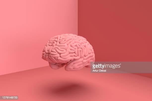 3d digital picture of human brain in solid color. - hjärna bildbanksfoton och bilder