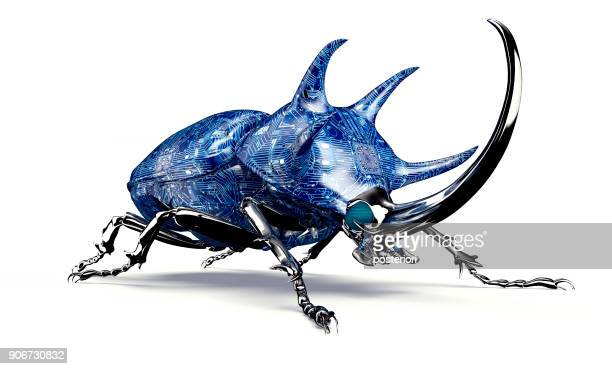 digital safety concept electronic computer bug isolated - insect stock pictures, royalty-free photos & images