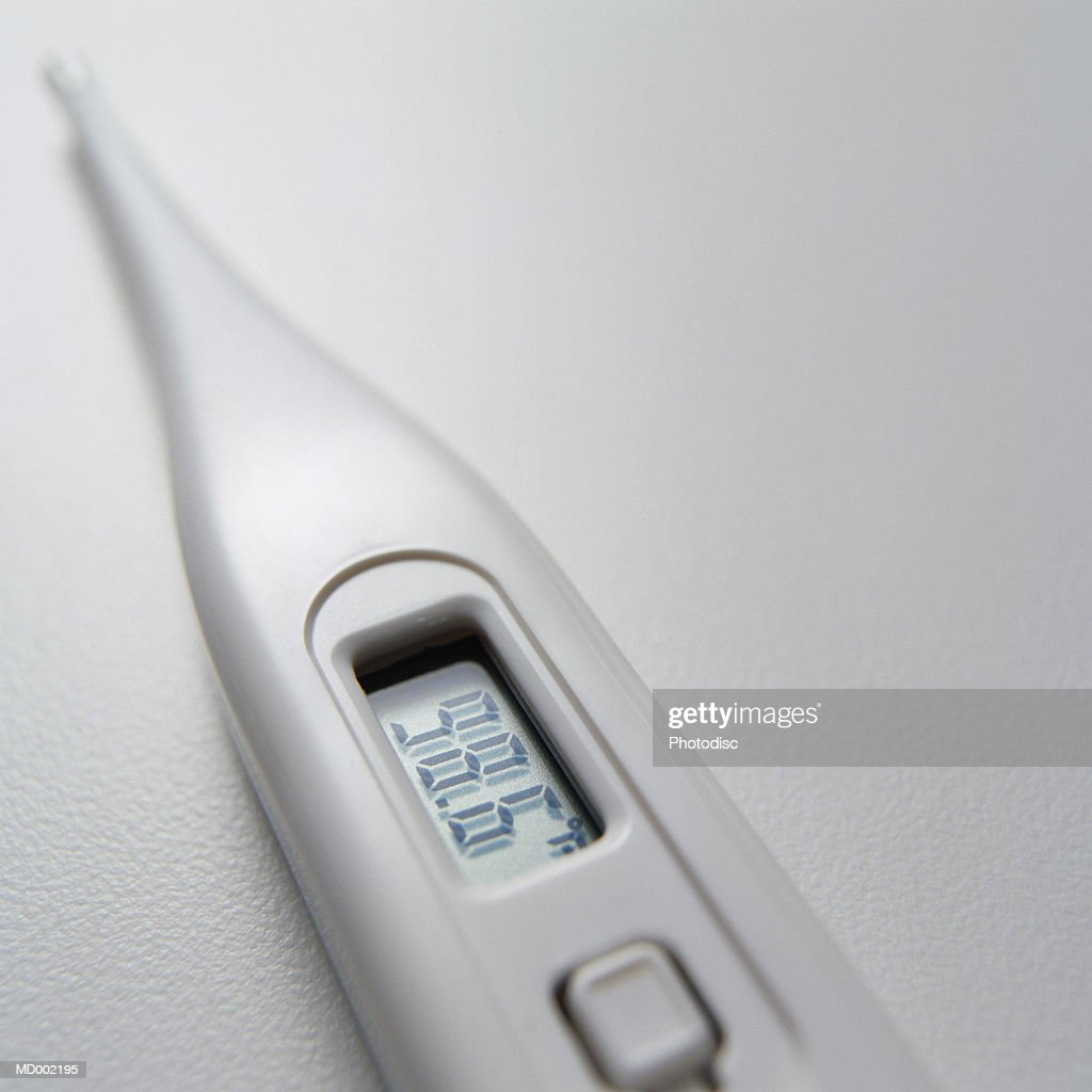 Digital Thermometer : Stock Photo