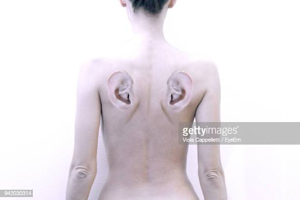 digitally generated image of woman with ears on back standing against white background - viola cappelletti foto e immagini stock