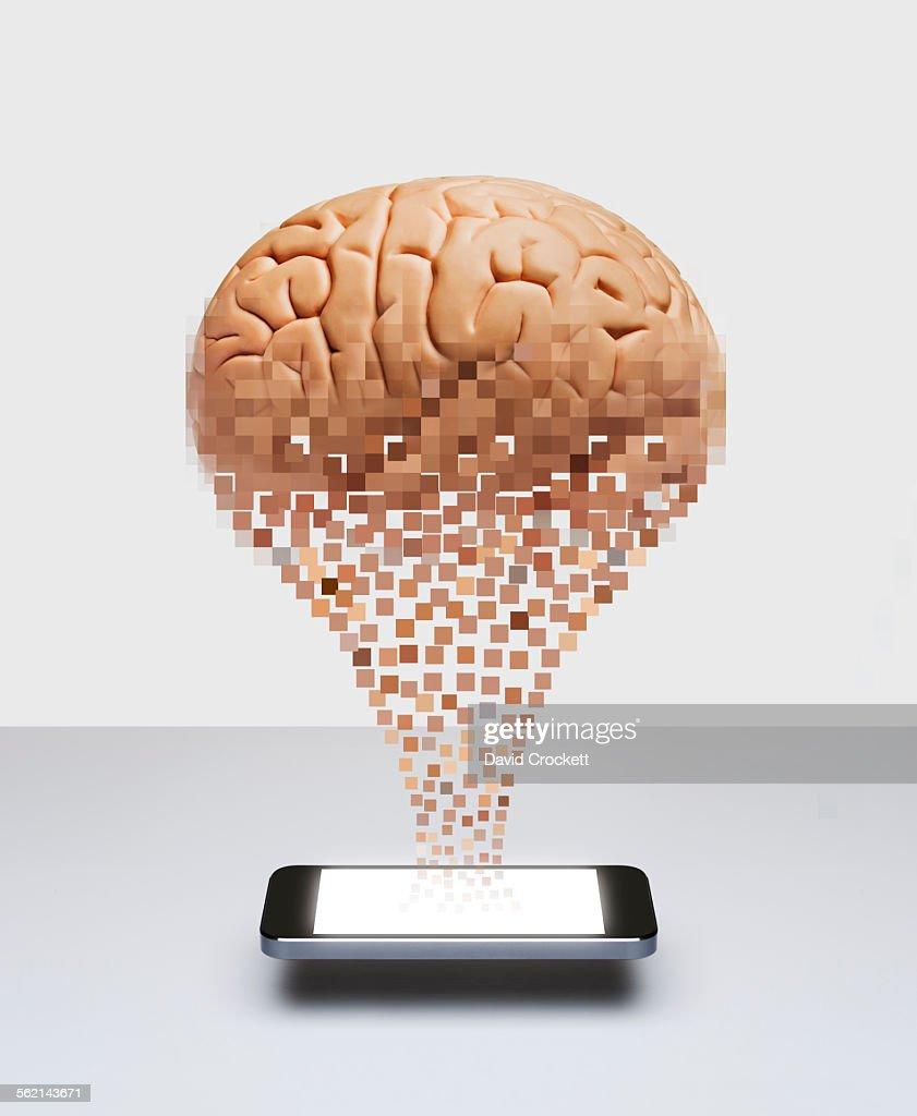 Digitized Brain : Stock Photo