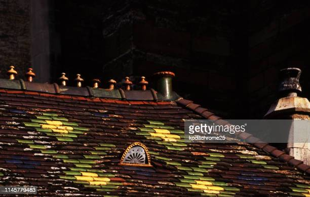 dijon bourgogne france tuiles de toit multicolores sur des maisons dans la vieille ville-tourné sur le film - dijon photos et images de collection