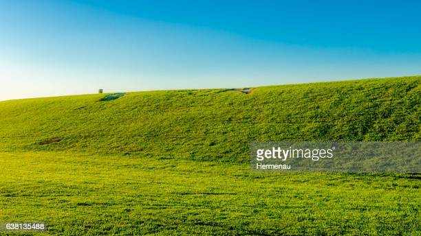 dike - zeeland stock pictures, royalty-free photos & images
