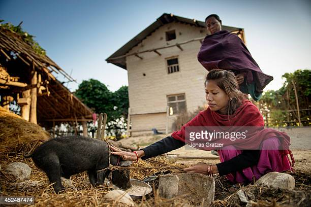Dil Kumari Chaudhary plays with the family pig that they will send in exchange for her freedom now age 21 was an exKamlari who was sold by her...