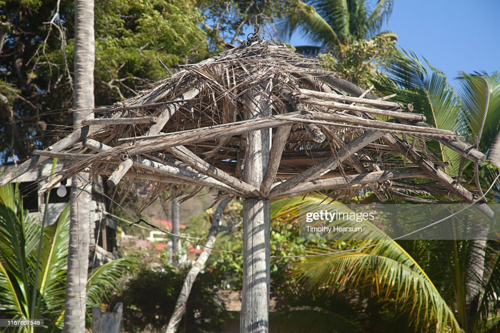 Dilapidated framework of old palapa with palm trees beyond; Costalegre, Jalisco, Mexico : Stock Photo