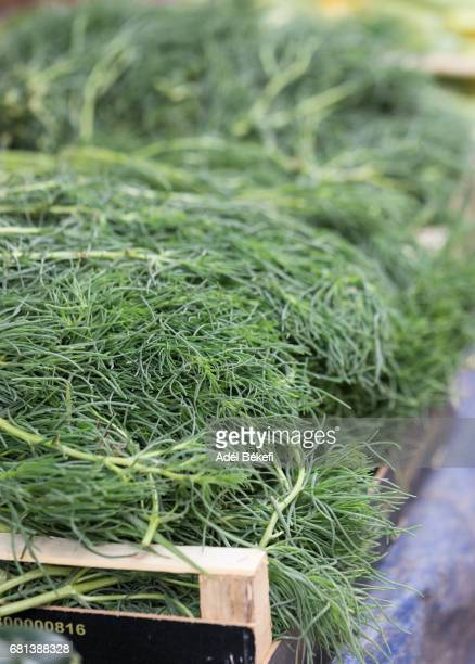 dill at the market