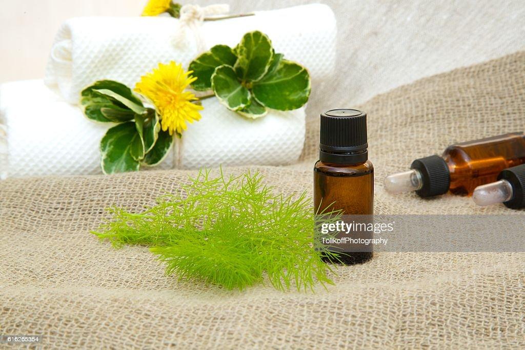 Dill essential oil : Stock Photo