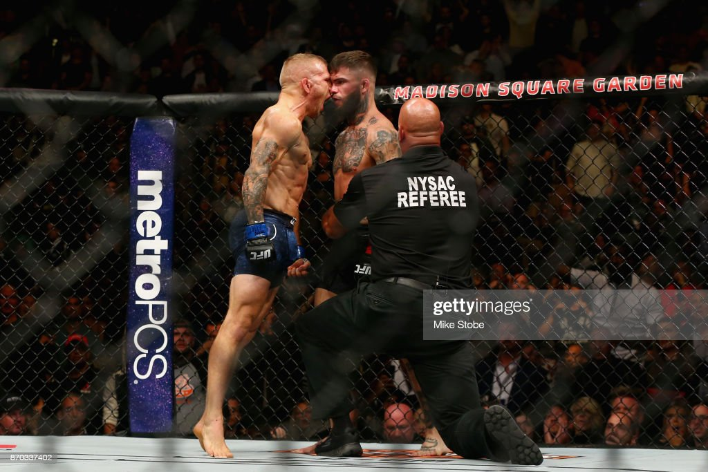 UFC 217: Garbrandt v Dillashaw : News Photo