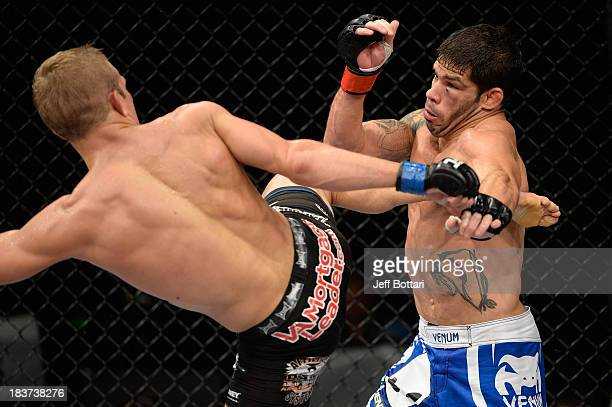 Dillashaw kicks Raphael Assuncao in their bantamweight bout during the UFC Fight Night event at the Ginasio Jose Correa on October 9, 2013 in...