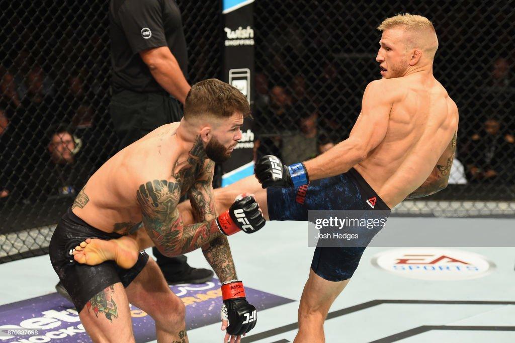 UFC 217: Garbrandt v Dillashaw : News Photo