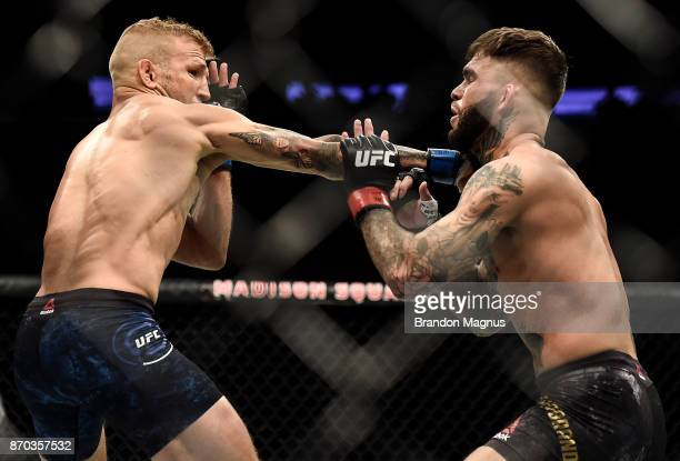 TJ Dillashaw punches Cody Garbrandt in their UFC bantamweight championship bout during the UFC 217 event inside Madison Square Garden on November 4...