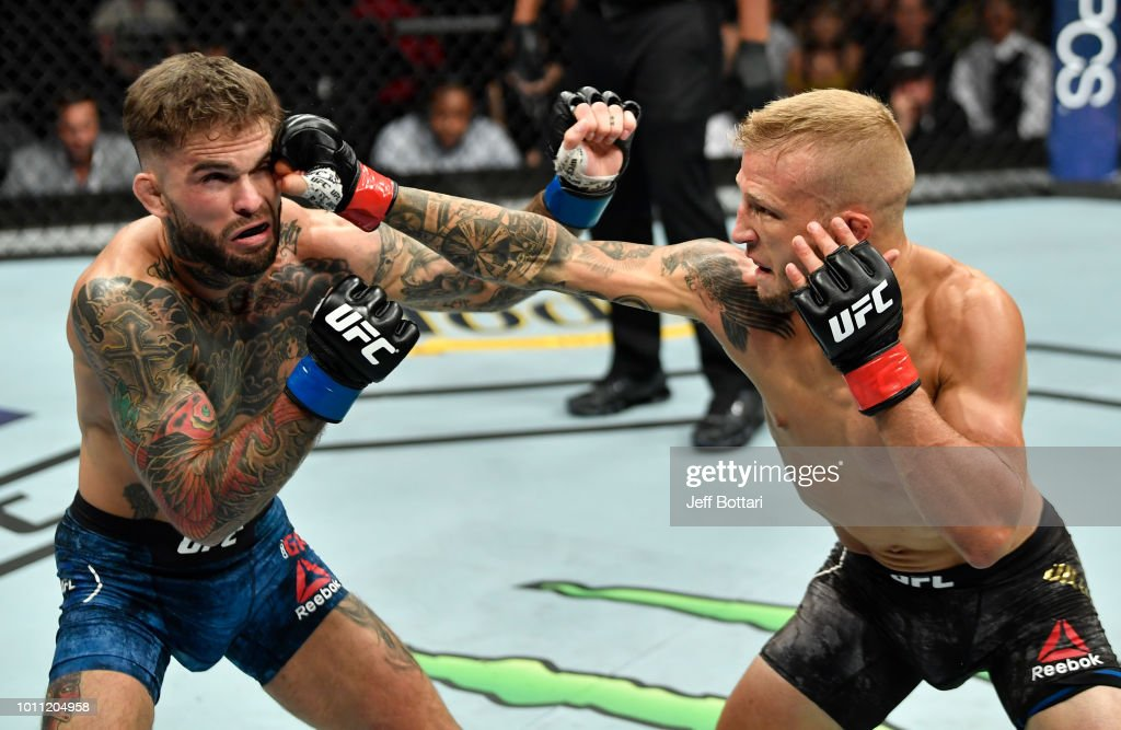 TJ Dillashaw punches Cody Garbrandt in their UFC bantamweight championship fight during the UFC 227 event inside Staples Center on August 4, 2018 in Los Angeles, California.
