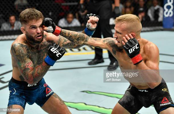 TJ Dillashaw punches Cody Garbrandt in their UFC bantamweight championship fight during the UFC 227 event inside Staples Center on August 4 2018 in...