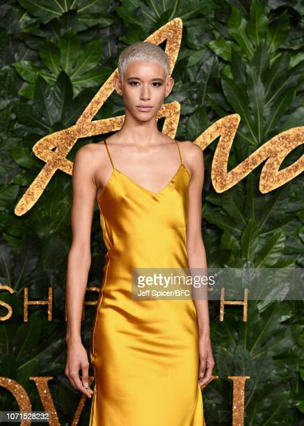 Dilone arrives at The Fashion Awards 2018 In Partnership With Swarovski at Royal Albert Hall on December 10 2018 in London England