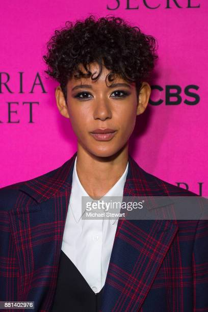 Dilone attends the 2017 Victoria's Secret Fashion Show viewing party pink carpet at Spring Studios on November 28 2017 in New York City