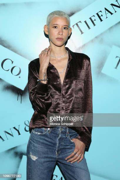 Dilone attends the Tiffany Co Modern Love Photography Exhibition on February 9 2019 in New York City