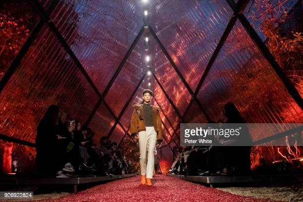 Dilone walks the runway during the Hermes show as part of the Paris Fashion Week Womenswear Fall/Winter 2018/2019 on March 3 2018 in Paris France
