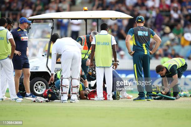 Dimuth Karunaratne of Sri Lanka receives attention after being struck by a Pat Cummins of Australia delivery during day two of the Second Test match...