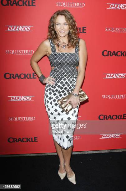 Dina Meyer arrives at the Crackle Original Series' Cleaners and Sequestered Summer premiere celebration held at 1 OAK on August 14 2014 in West...