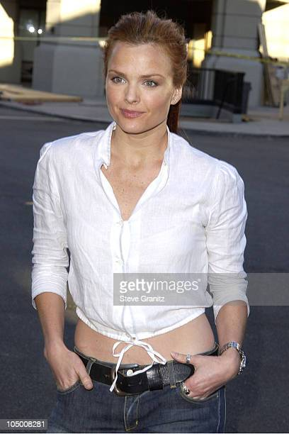 Dina Meyer during Blood Work Premiere at Steven J Ross Theater in Burbank California United States