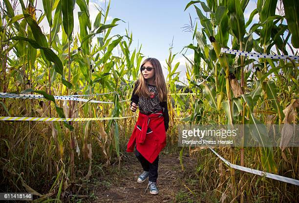 Dinah Routhier winds through the corn maze at Ricker Hill Orchards in Turner which also has a petting zoo cider donuts and other things for kids to do